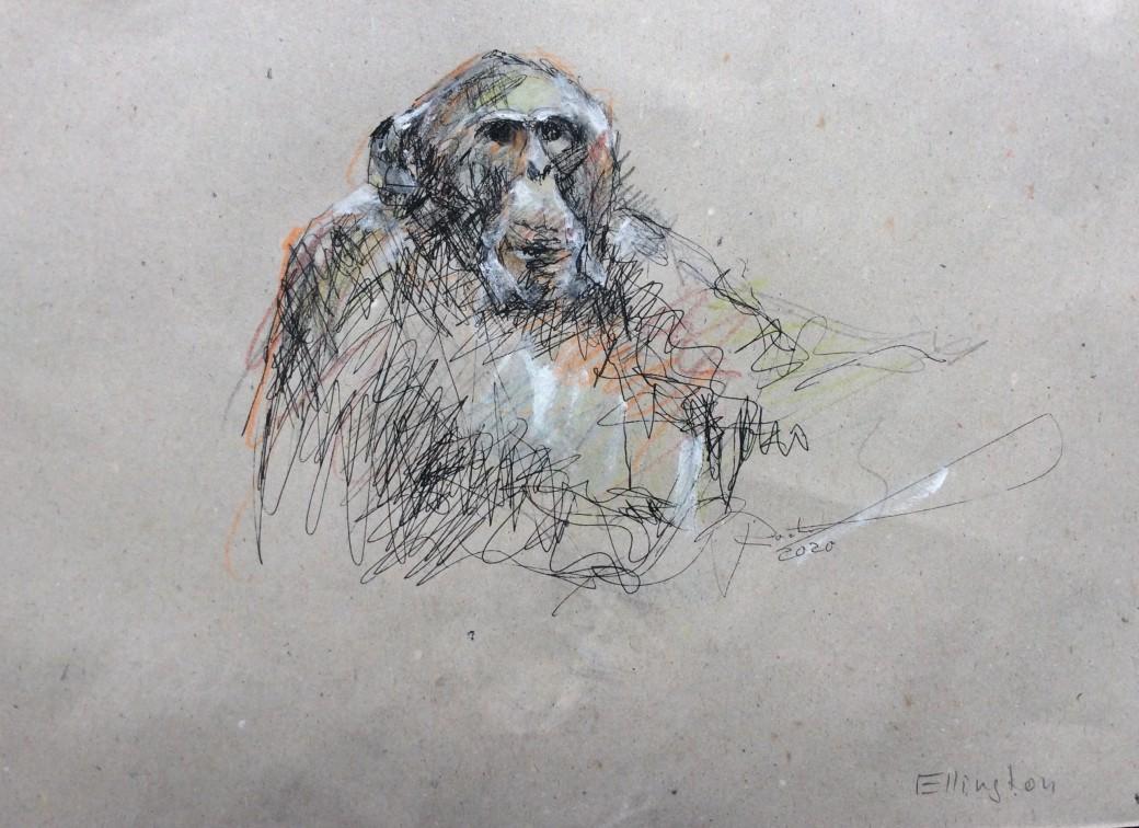 13, Zeichnung