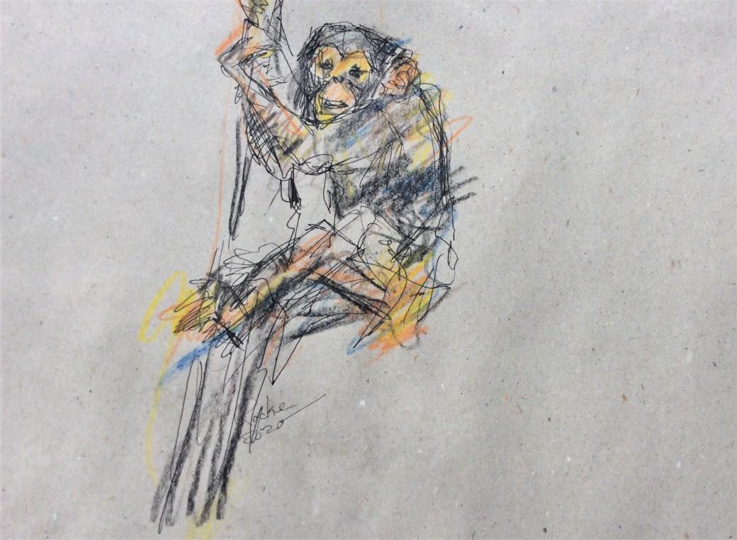 20, Zeichnung