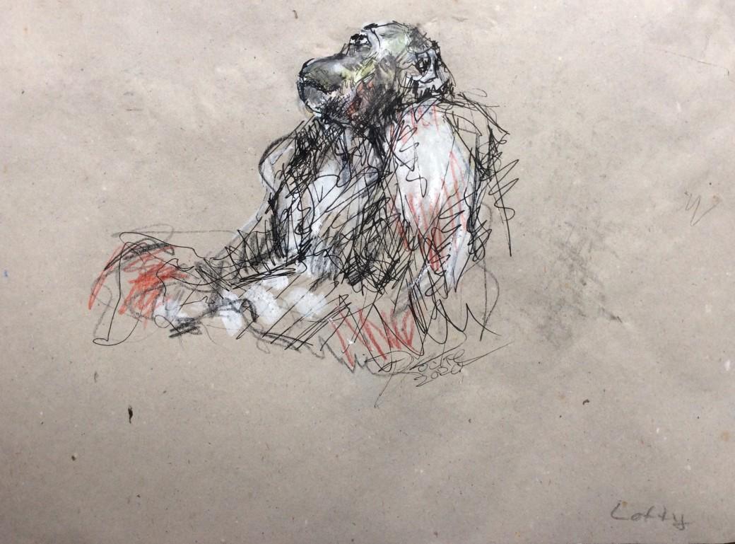 16, Zeichnung
